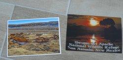 postcard USA New Mexico