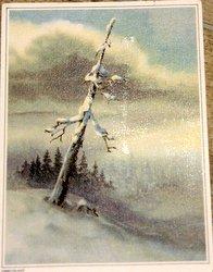 finnland postcard winter landscape