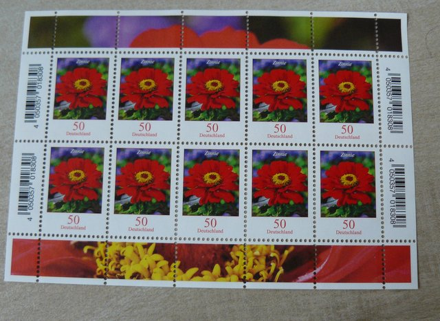 german stamp of a Zinnia