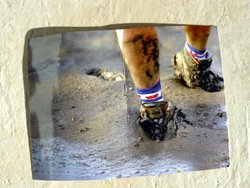 postcard of mudflat hiker
