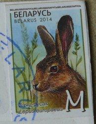 rabbit stamp from Belarus