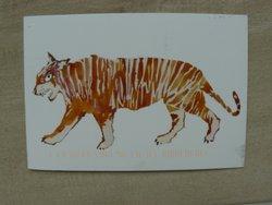 drawing tiger postcard