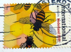 postage stamp bees