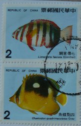 fish postage stamps taiwan