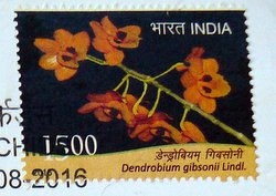 India orchid postage stamp