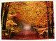 thumbnail image Autumn postcard